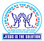 The Truth Visionary Mission - Ttvm's Company logo