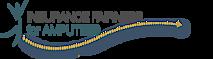 The University Of North Carolina At Chapel Hill's Company logo