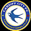 Cardiffcitynews's Company logo