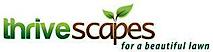 Thrive Agency's Company logo