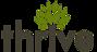 Pagemetric's Competitor - Thrive Internet Marketing logo