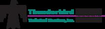 Thunderbirdservice's Company logo