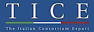 TICE's Company logo