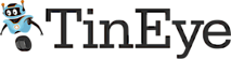 TinEye's Company logo