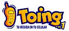 Toing's Company logo