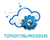 Top Hosting Providers's Company logo