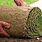 Hostmonsta's Competitor - Toro Paving & Landscape Design logo