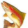 Torre Trout Farms's Company logo