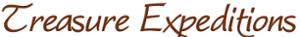 TreasureExpeditions's Company logo
