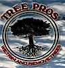 Treeprosaz's Company logo