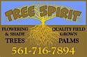 Tree Spirit's Company logo