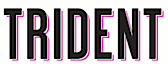 Trident Computer Services's Company logo