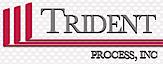 Trident Process's Company logo