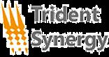 Trident Synergy's Company logo