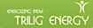 dHybrid Systems's Competitor - Trilig Energy logo