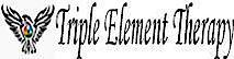 Triple Element Therapy - David Miguez's Company logo