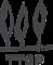 Berkery Noyes's Competitor - TripleTree logo