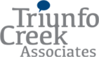 Triunfo Consulting's Company logo