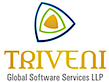 Triveni Global Software Services's Company logo
