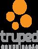 Truped Multimedia's Company logo