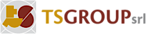Ts Group Srl's Company logo