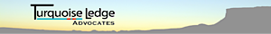 Turquoise Ledge Advocates's Company logo