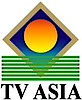 TV Asiausa's Company logo