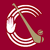 Ulster Camogie's Company logo