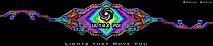 Ultra Poi's Company logo