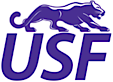 University Of Sioux Falls Cougars's Company logo