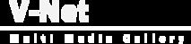 V-netcomputers's Company logo