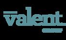 Valent Group, LLC's Company logo