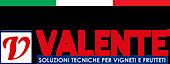 Valente Pali's Company logo