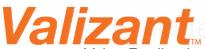 Valizant's Company logo
