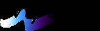 Vapor Sky's Company logo