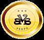 Vbbpo's Company logo