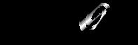 VEXOR's Company logo