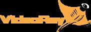 VideoRay's Company logo