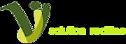 Vijanat It Solutions's Company logo