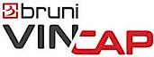 Vincap 's Company logo