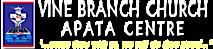 Vine Branch Church Apata Centre's Company logo