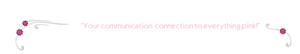 Virtual Pink Sister Assistants's Company logo