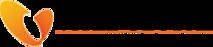 Vitel Global's Company logo