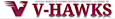 Friendsathletics's Competitor - Viterboathletics logo