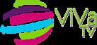 Viva Tv, Canal 45's Company logo