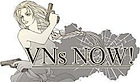 Vns Now's Company logo