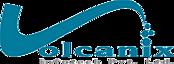 Volcanix Infotech's Company logo