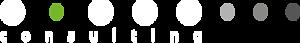 Voras Consulting's Company logo