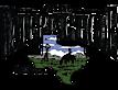 watering hole saloon's Company logo