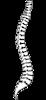 Watt Family Chiropractic's Company logo